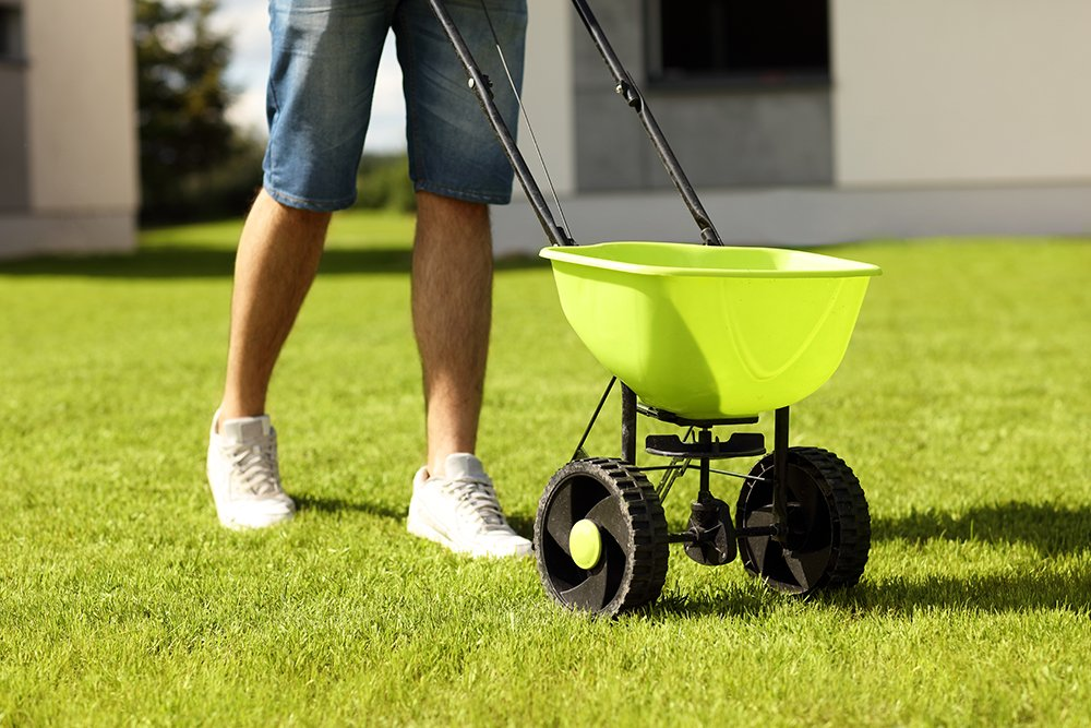 4 Tips to Fertilizing Your Lawn in Spring