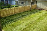 5 Winter Lawn Treatment Tips for Alberta's Homeowners
