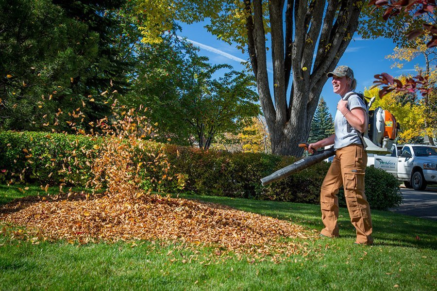 Fall Clean Up Calgary and Edmonton