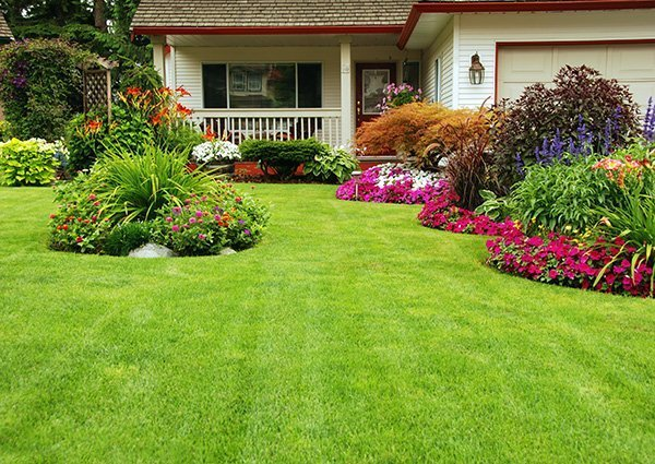 Lawn Services in Calgary and Edmonton