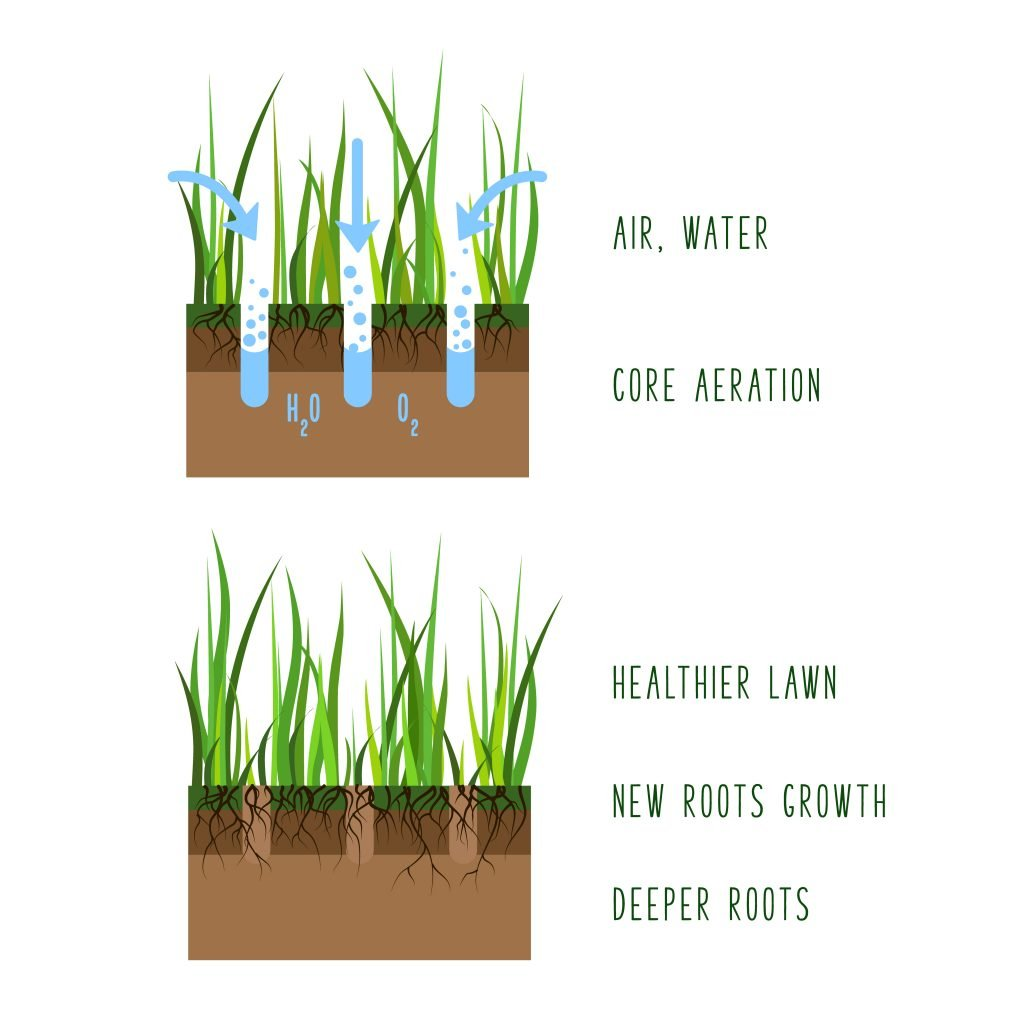 8 Benefits of Lawn Aeration